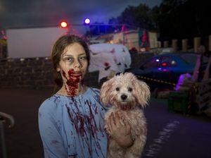 Zombies awaken for charity