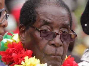 Zimbabwe's Mugabe feasts on elephant at 91st birthday