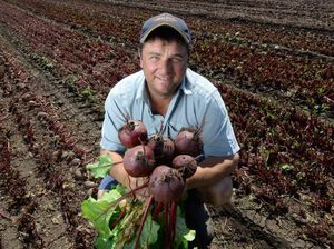 Mayor says if you want safe food, grow it in Lockyer Valley