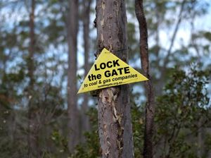 GetUp, Lock the Gate earn commissions from anti-CSG campaign