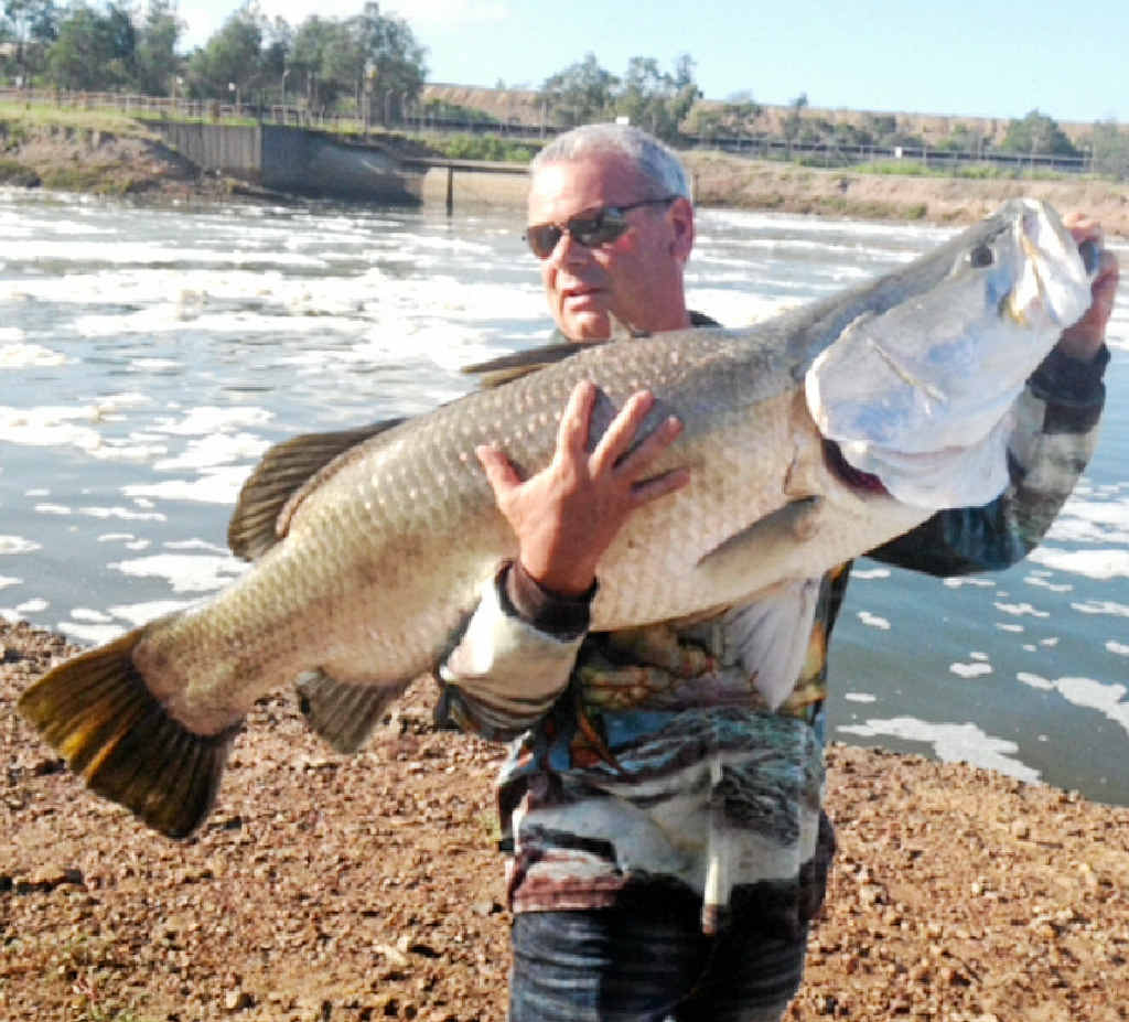 MONSTER CATCH: Greg Elliott with his monster barramundi, caught from the banks of the Calliope River.