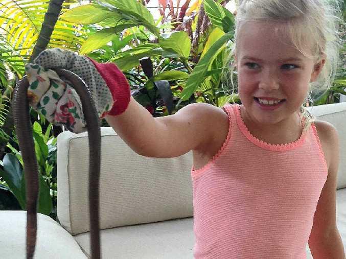 ARM'S REACH: Scarlett Simoneau, 7, with a giant earthworm found at her Buderim home.