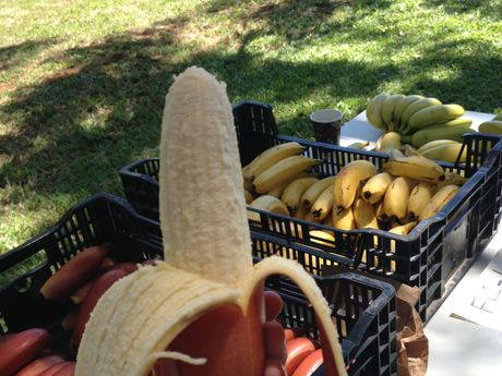 Bananas can be frozen but usually are only useful for smoothies and baking after defrosting.