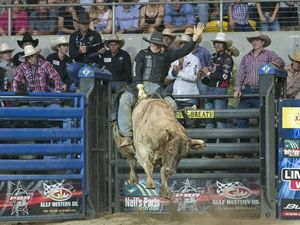 Talented bull rider is coming to Hervey Bay in May