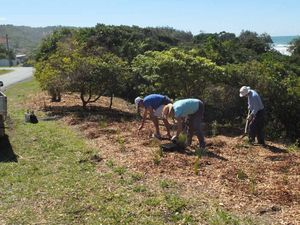 Landcare projects profile
