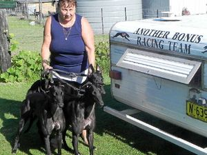 Three-way hope for Harris kennels in greyhound final