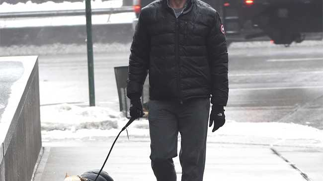 Hugh Jackman and his dogs Dali and Allegra