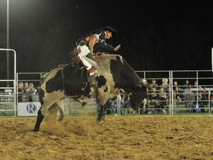 Champion bull rider to score at Dalby PBR