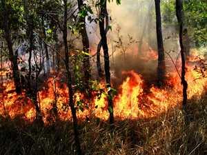 Burn planned for Lockyer National Park