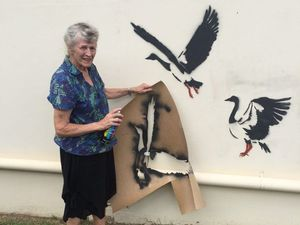 Geese 'flock' to wall of Maryborough artist's home
