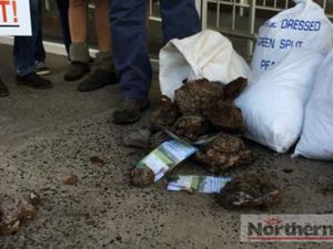 Cow manure dumped at Thomas George's office by protestors