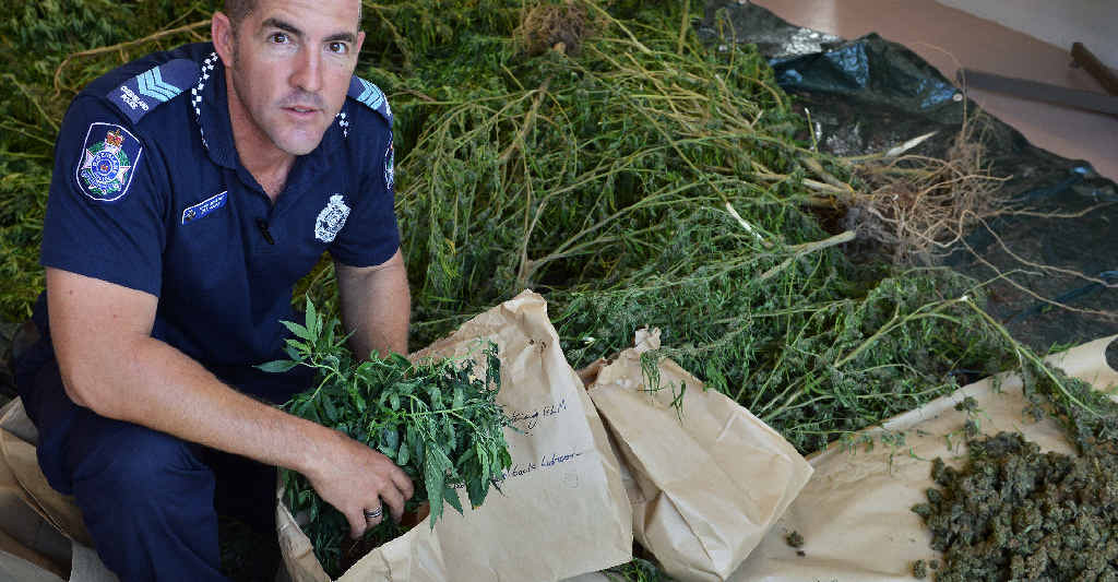 AMAMOOR BUST: Acting Sergeant Bill Greer with 114 cannabis plants and 1.8kg of head seized from an Amamoor Creek property last Friday.