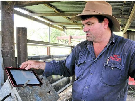 TECH SAVVY: Calliope cattle farmer Will Wilson's iPad has become a vital business tool to use the app he developed and will showcase at Beef 2015.