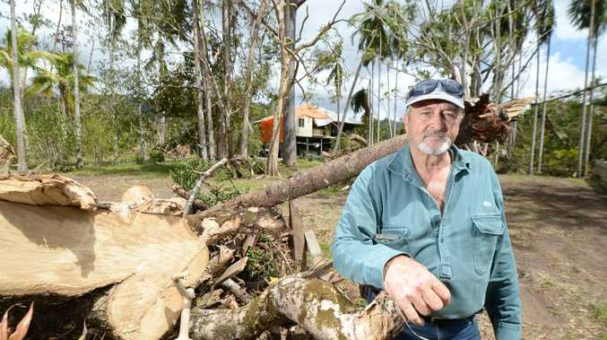 Byfield resident Ted Stack was hoping to convert an old Queenslander into a restaurant and art gallery but has put those plans on hold as he cleans up after Cyclone Marcia. Photo: Chris Ison / The Morning Bulletin