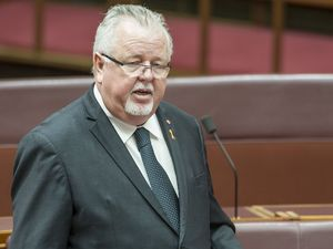 Toowoomba senator hits out at 'barbaric' abortion bill