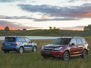 Subaru adds automatic diesel to MY15 Forester line-up