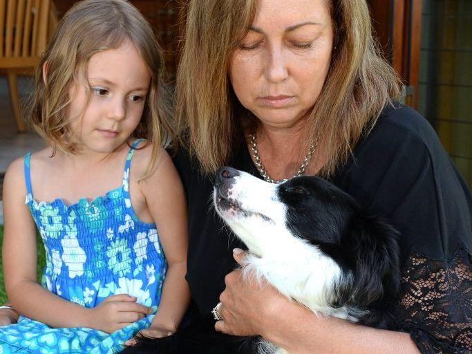 Granddaughter Lilli Sharman, five, with Christine Jackson and border kelpie Obi. Photo: John Gass / Tweed Daily News