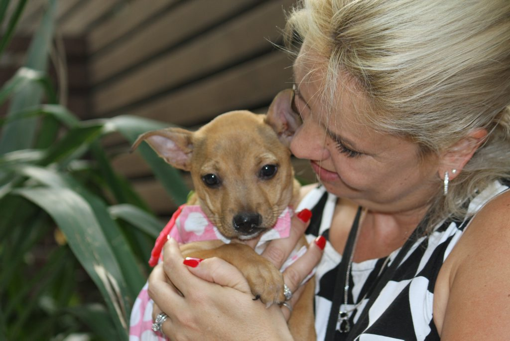 Karyn Lohse, Pets in Crisis co-ordinator with a pup rescued from domestic violence. Photo Sherele Moody / APN NewsDesk