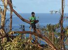 A young boy looks over his village on Tanna Island , Vanuatu, Wests Panthers will be raising money this weekend to help in the recovery effort.