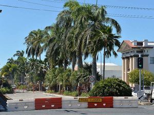 Traffic control in place during palm tree maintenance in CBD