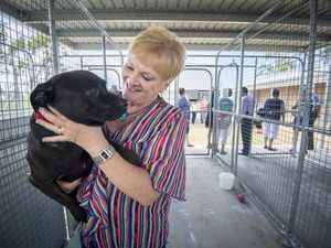Oh boy! New pet adoption centre officially opens