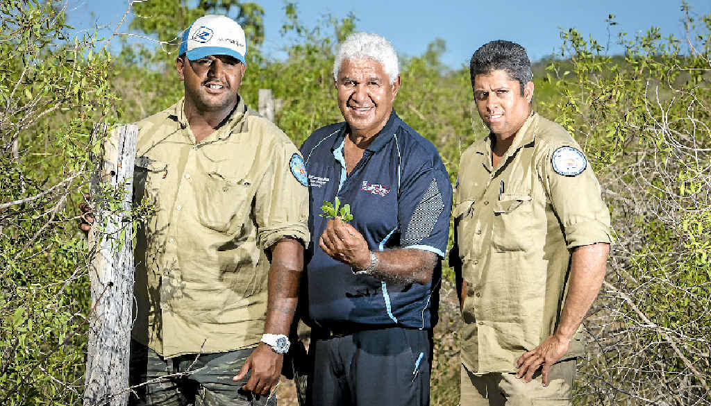 HELPING HAND: Gabe Little, Richard Johnson and Desmond Purcell are land and sea rangers exchanging cultural and historical knowledge to allow scientists to gain a better understanding of how mangroves have been managed in the past.