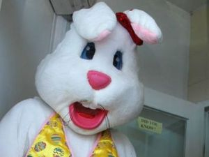 Cops detain and search Easter bunny after MP abused