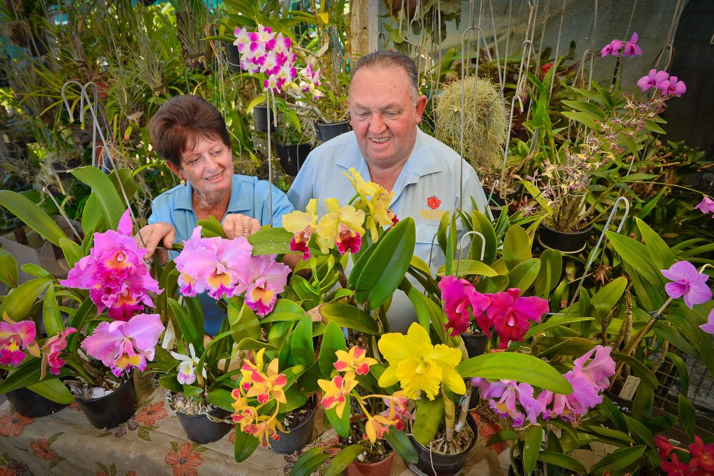 Gladstone Orchid and Foliage Society member Sunny Jenkinson and president Len Dowling.