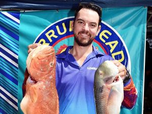 Better numbers at Burrum Heads Easter Fishing Classic