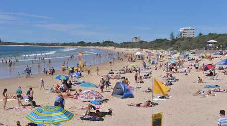 Mooloolaba Surf Club committee says it's going back to its core business of keeping watch on the beaches.