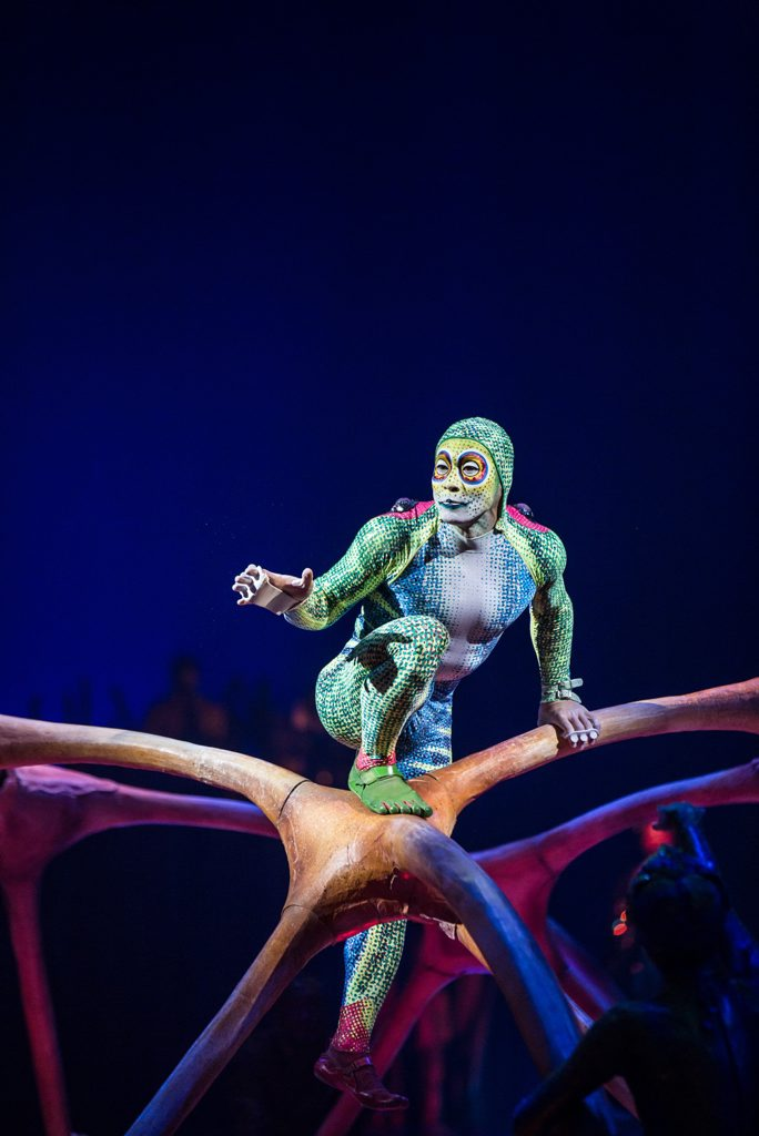 A scene from the Cirque du Soleil show Totem.