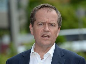 Shorten admits he failed to declare $40k donation