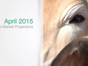 MLA Cattle Industry Projections April 2015 Update