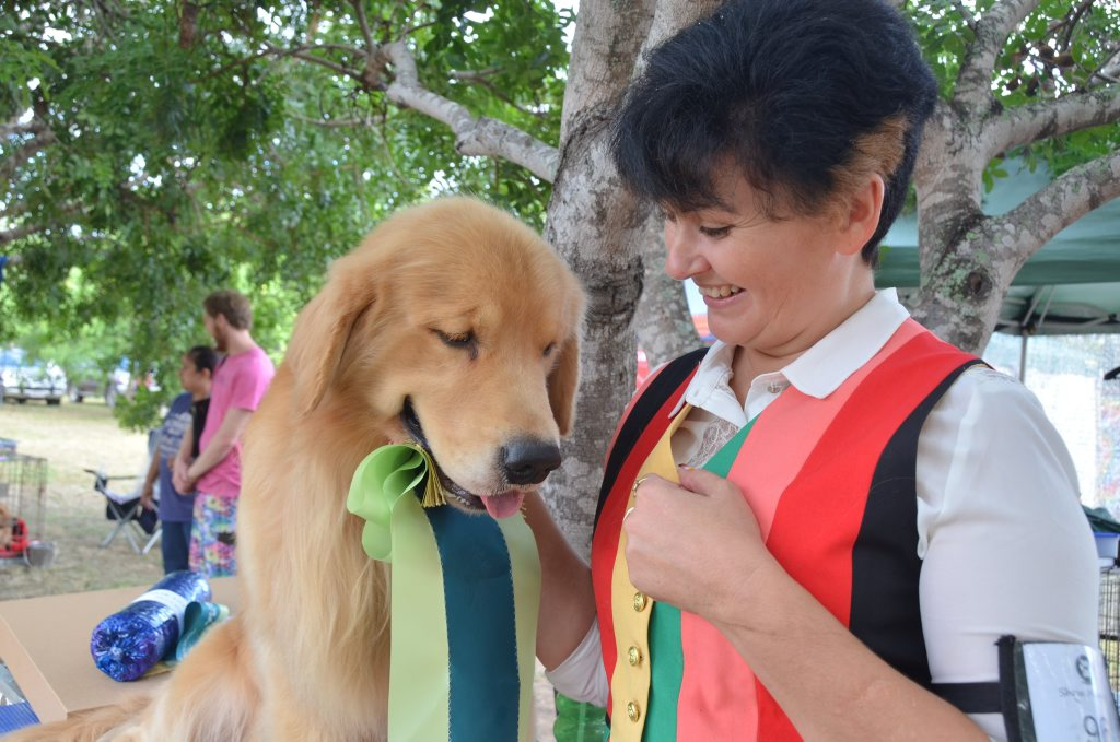 BEST IN SHOW: Golden retriever James - the youngest golden retriever to make Supreme Champion - takes out Best in Gayndah Show to the delight of owner Anthea Adamopoulos. Photo Shirley Way / Central & North Burnett Times