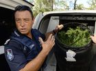 Grandma charged over mega marijuana haul at Coominya