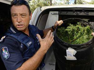 Police find huge stash of cannabis in Coominya