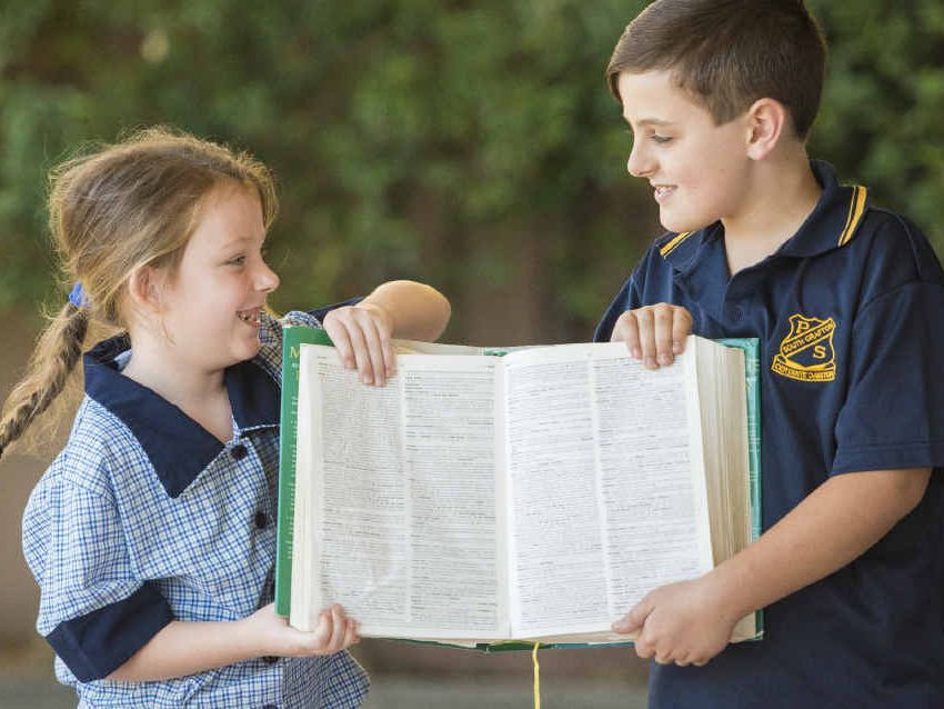 SCHOOL TIES: Cousins Ali McPherson, 7, of St Joseph's Grafton and Izakk McPherson, 11, of South Grafton Public School illustrate the divide between the public and private education systems.
