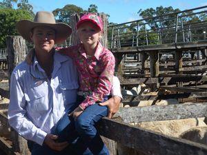 Cattle farmers take advantage of strong market