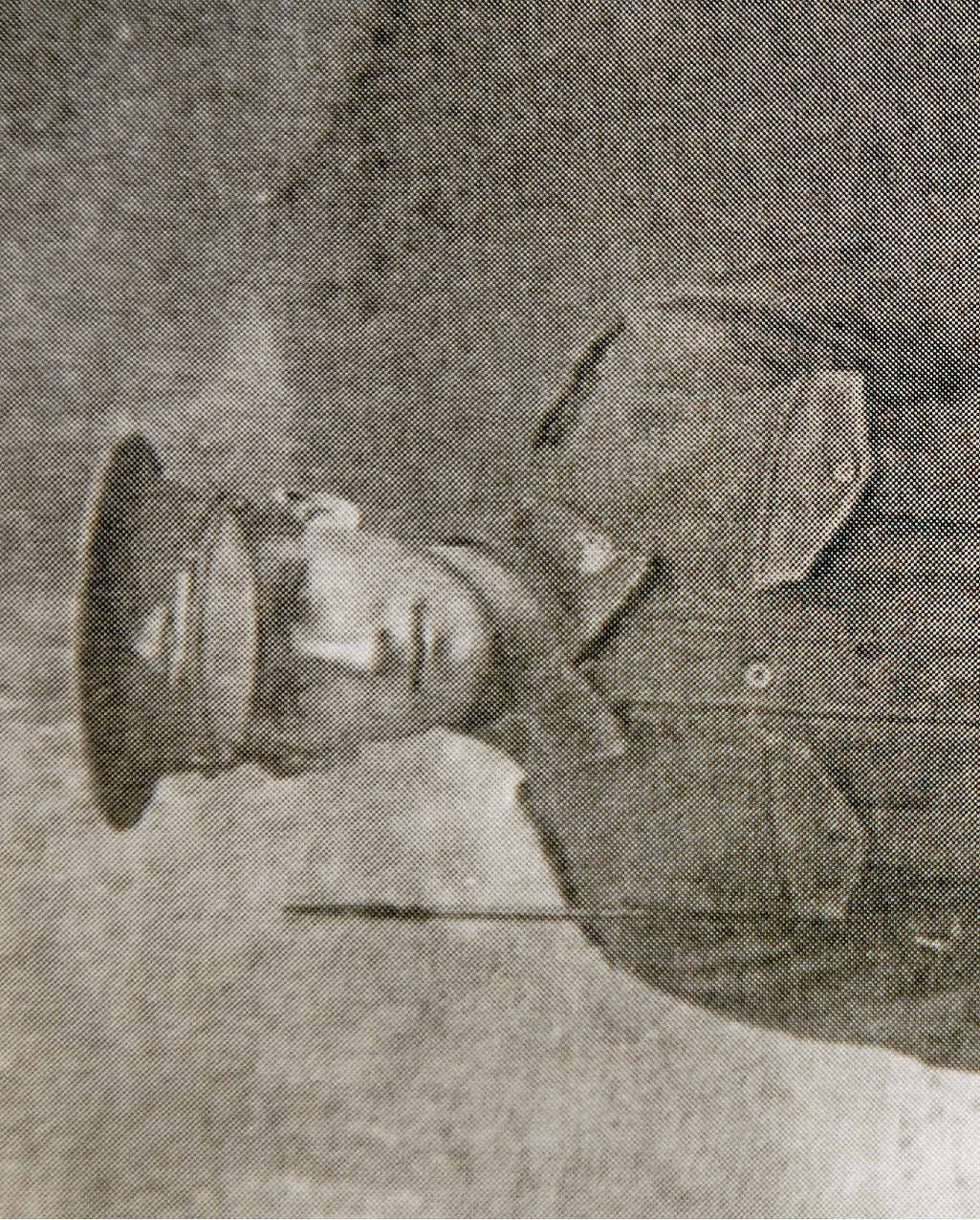 C. James Gordon Edwards was just 21 when he died on the Western Front in France while attacking the German trenches at Villers-Bretonneux. CONTRIBUTED