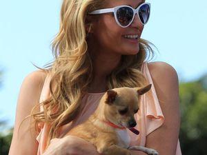 Paris Hilton has found 'the love of her life'