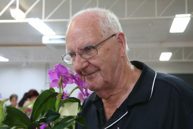 Neil Walker from Noosa and District Orchid and Foliage society takes in the delightful scent of his Dendrobium Dal's Elite.