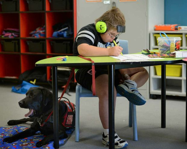 PUPPY PAL: Lochie Bailey at his desk at Rockhampton North Special School, while Rory stays close by. INSET: Smart Pup Rory is opening up a whole new world for Lochie.
