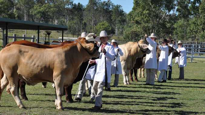 Young Paraders (15-25 years) show their stuff at Eidsvold Show. Photo Katherine Kokkonen / Central and North Burnett Times