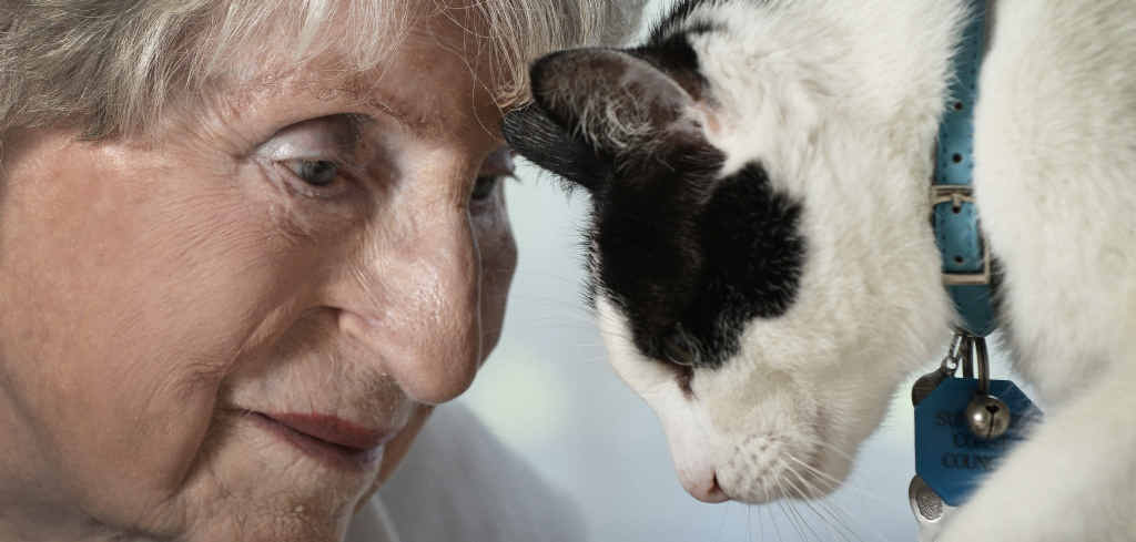 Tricare Kawana have pets for therapy program to boost morale with the elderly residents. Resident Anne Simpson, 95, takes time out with Augie, Photo Patrick Woods / Sunshine Coast Daily
