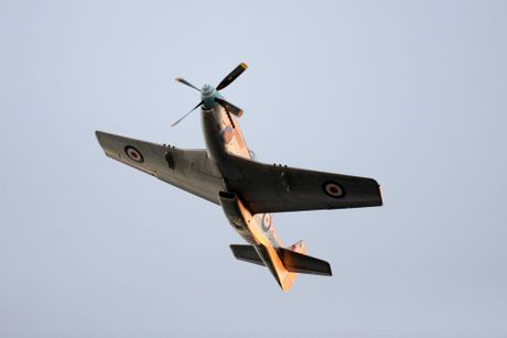 FLY PAST: The P51D Mustang banks over the record crowd attending the Bargara Dawn Service. Photo: Mike Knott / NewsMail