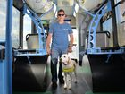 Guide dogs the eyes and ears for Shayne