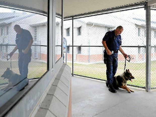 PRESSURE-COOKER: Maryborough Correctional Centre dog squad supervisor Peter Baumanis in the centre.
