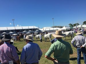 What people think of Beef Australia 2015 as of day 2
