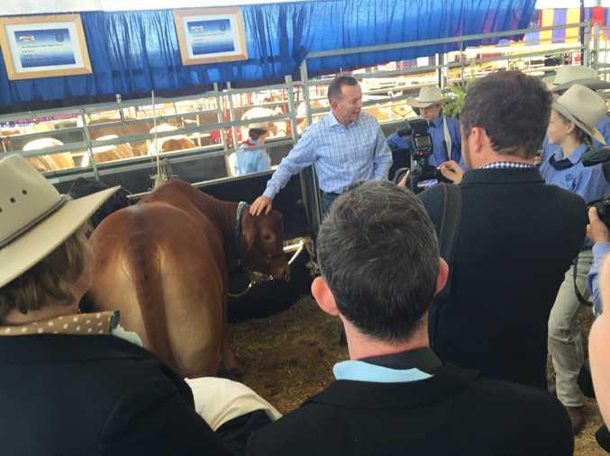 Prime Minister Tony Abbott at Beef Australia 2015 at Rockhampton Showgrounds