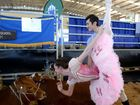 Beauty meets the beast at Beef Australia 2015